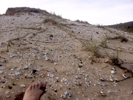 Tying toe to midden using grass